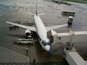 obesity-flight-attendents-photo